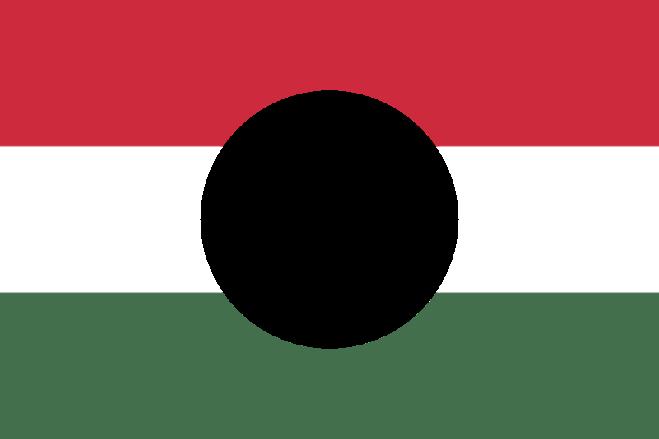 Ungerns revolutionsflagga