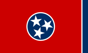 Röd flagga med blå cirkel i mitten med tre vita stjärnor inuti